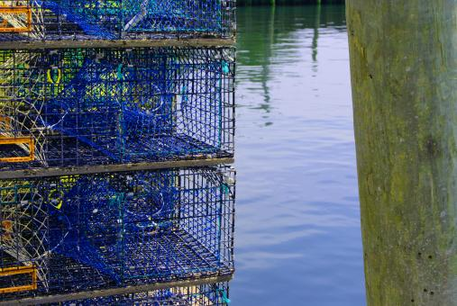 Free Stock Photo of Lobster Traps