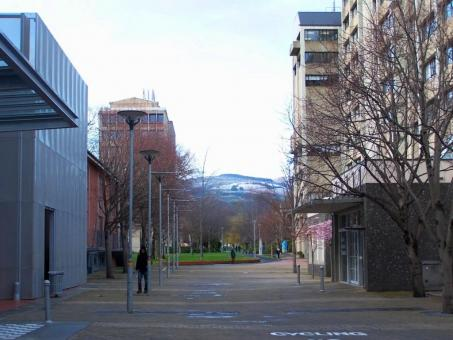 Free Stock Photo of University of Otago - Winter  2010