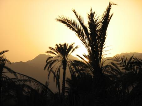 Free Stock Photo of Sunset in Fujairah