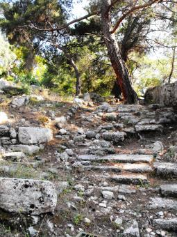 Free Stock Photo of Ancient stairs in Phazelis