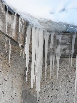Free Stock Photo of Icicles