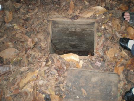 Free Stock Photo of Cu Chi Tunnel 10