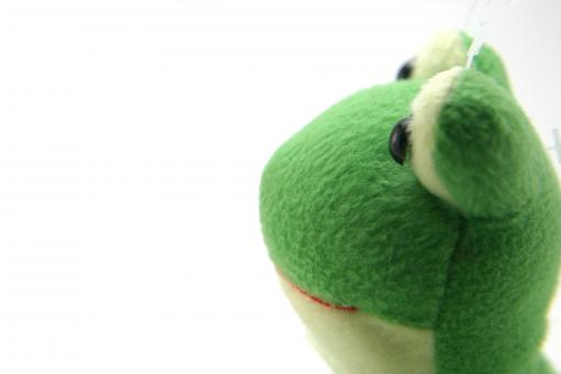 Free Stock Photo of Green fluffy frog toy
