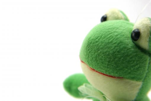 Free Stock Photo of Green fluffy toy
