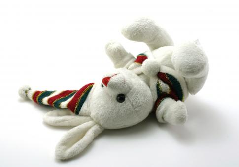 Free Stock Photo of Adorable generic stuffed bunny