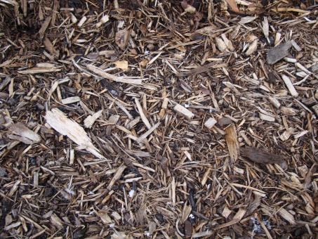 Free Stock Photo of Woodchips