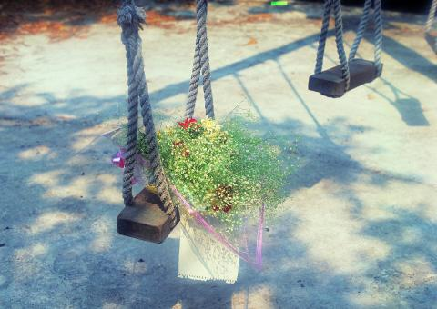 Free Stock Photo of Flower on swing set