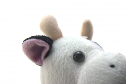Free Stock Photo of Funny cow toy