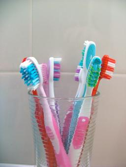 Free Stock Photo of Toothbrushes