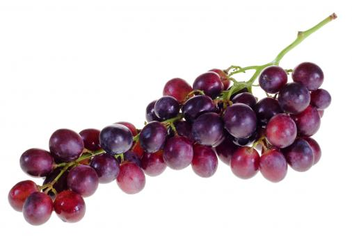 Free Stock Photo of Purple Grapes