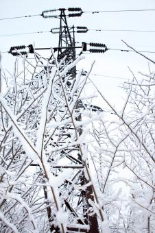 Free Stock Photo of Icy Power Lines