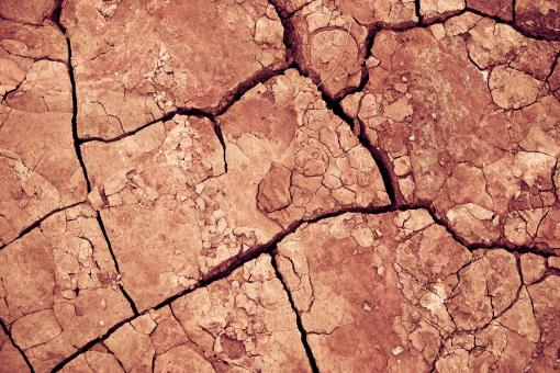 Free Stock Photo of Cracked Mud Texture