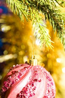 Free Stock Photo of Christmas decoration