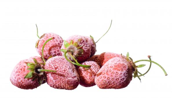 Free Stock Photo of frozen Strawberry