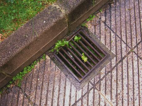 Free Stock Photo of Sewer prision
