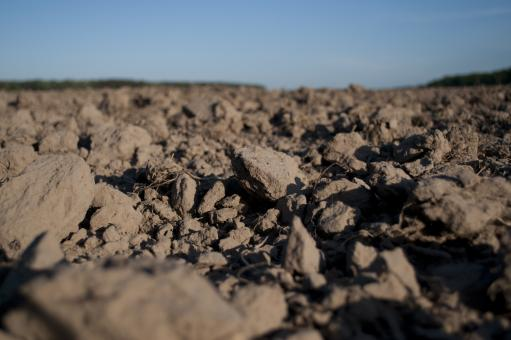 Free Stock Photo of Dirt Field
