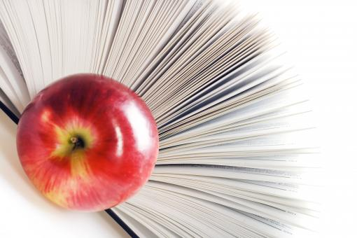 Free Stock Photo of book and apple