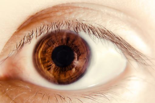 Free Stock Photo of Eye Closeup