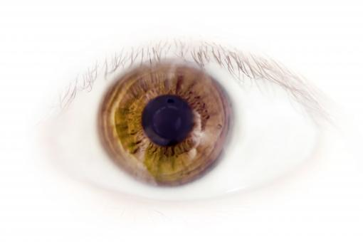 Free Stock Photo of Eye