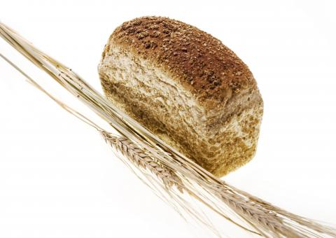 Free Stock Photo of Wheat and Bread