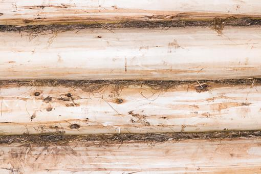 Free Stock Photo of Old Wooden Background