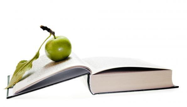 Free Stock Photo of Green Apple on Book