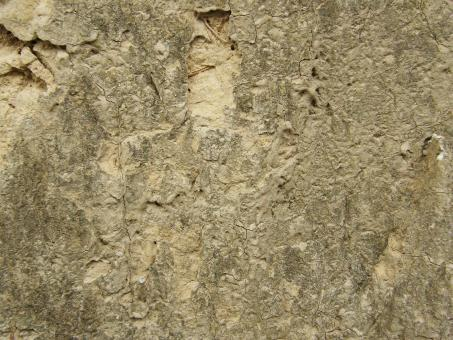 Free Stock Photo of Muddy Wall Texture