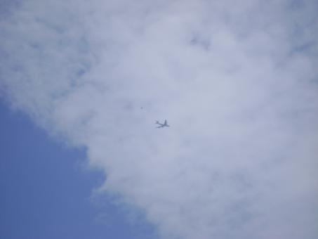 Free Stock Photo of Blue sky with aeroplane