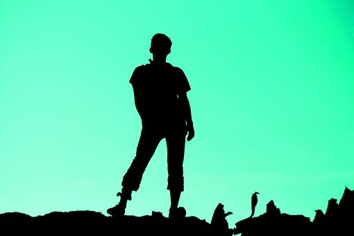 Free Stock Photo of Silhouette