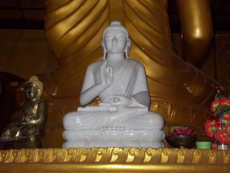 Free Stock Photo of Gautam buddha