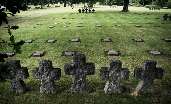 Free Stock Photo of Military graves