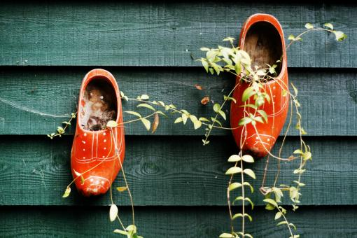 Free Stock Photo of clogs hanging on fence