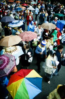 Free Stock Photo of People with umbrella's