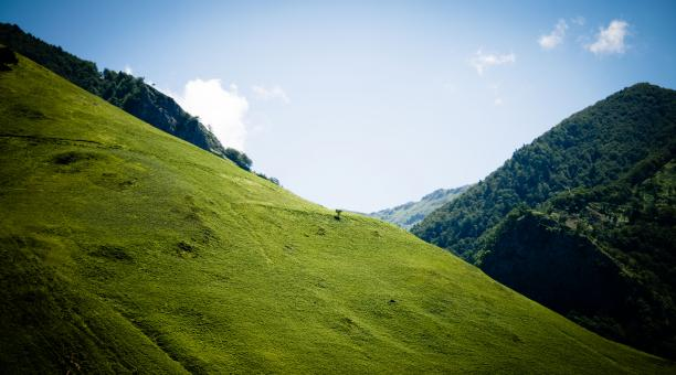 Free Stock Photo of Green hill