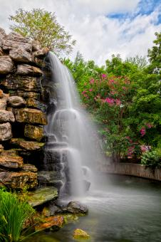 Free Stock Photo of Zoo Waterfall - HDR