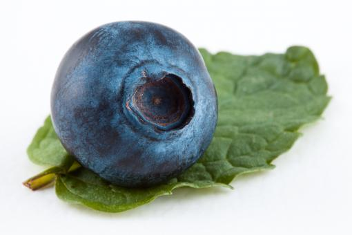 Free Stock Photo of Blueberry and Mint