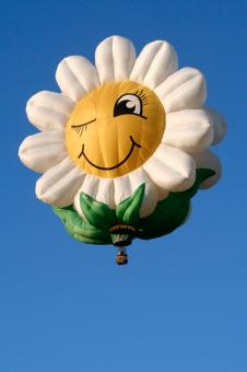 Free Stock Photo of Smiling Daisy Air Balloon