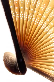 Free Stock Photo of Sweeping Asian Fan