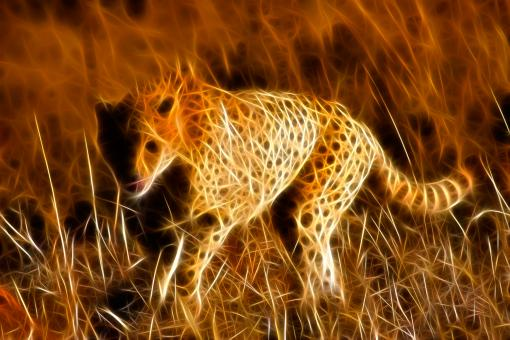 Free Stock Photo of Sprinting Cheetah Abstract