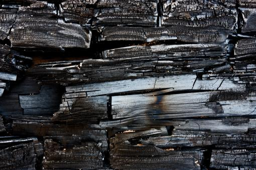 Free Stock Photo of Charred Wood Texture