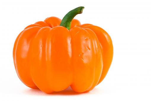 Free Stock Photo of Orange Bell Pepper