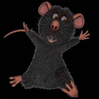 Free Stock Photo of Rat