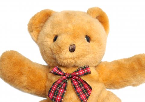 Free Stock Photo of teddy bear