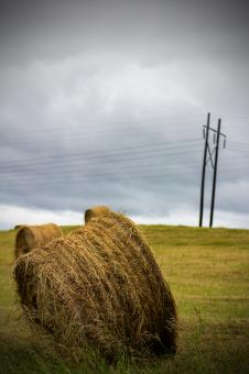 Free Stock Photo of Hay bale