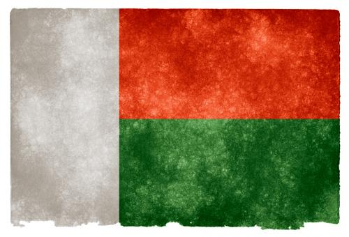 Free Stock Photo of Madagascar Grunge Flag