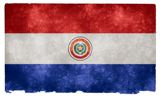 Free Stock Photo of Paraguay Grunge Flag