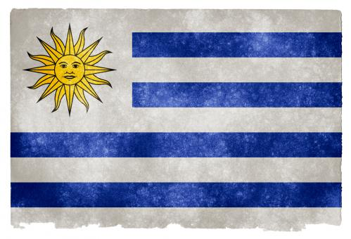 Free Stock Photo of Uruguay Grunge Flag
