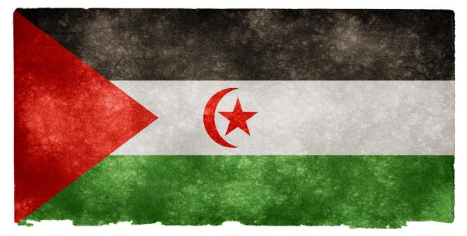 Free Stock Photo of Western Sahara Grunge Flag