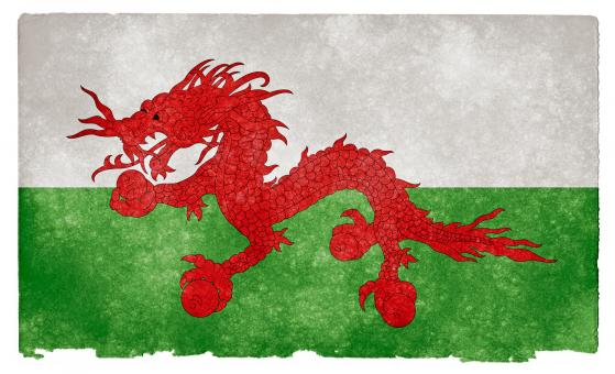 Free Stock Photo of Asian Welsh Grunge Flag