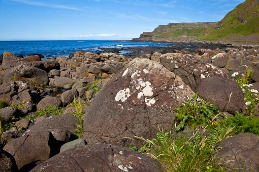 Free Stock Photo of Giants Causeway